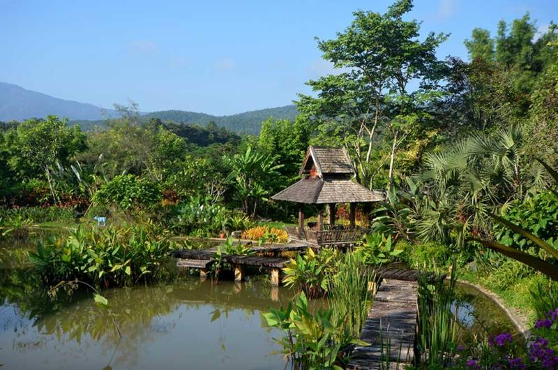 Flora and Fauna at luxury Chiang Mai accommodation