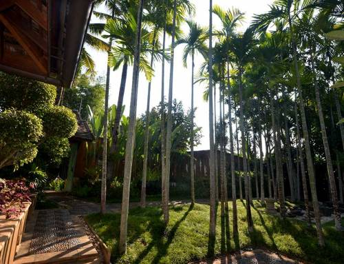 Plan Your Holiday at a Luxury Resort in Chiang Mai